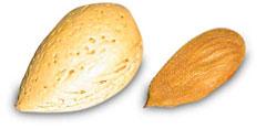 Mandelolie (sød mandelolie)